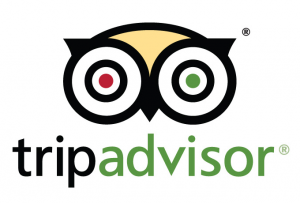 logo trip advisor 02 300x203 - New Website Launched